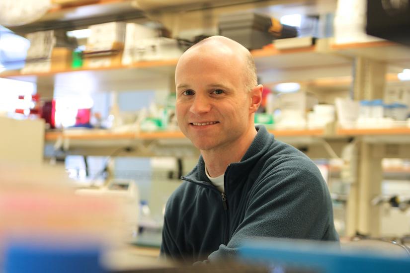 Photo of Biomedical Engineering Professor William Murphy