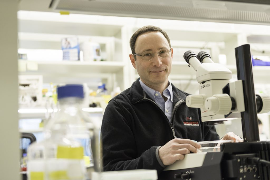 Morgridge Institute for Research investigator Phillip Newmark