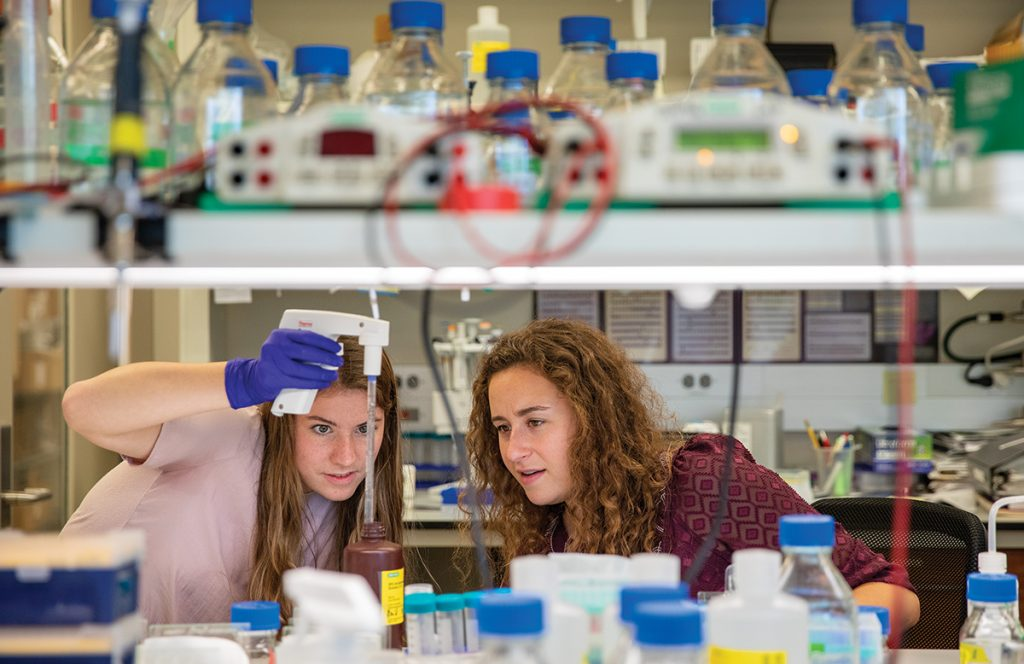 Undergraduate students working in the lab